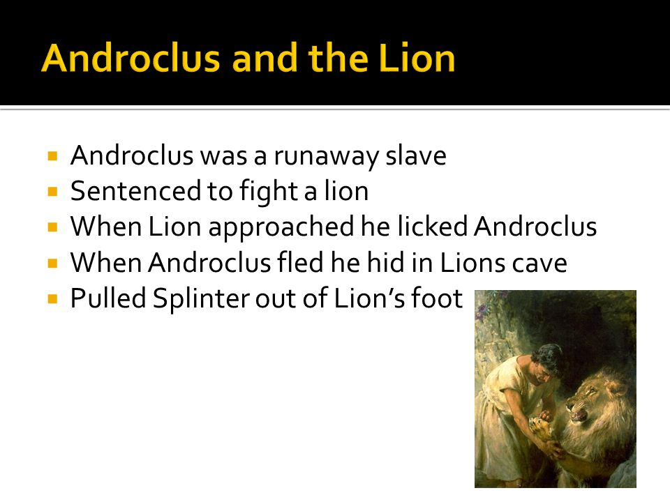  Androclus was a runaway slave  Sentenced to fight a lion  When Lion approached he licked Androclus  When Androclus fled he hid in Lions cave  Pulled Splinter out of Lion's foot