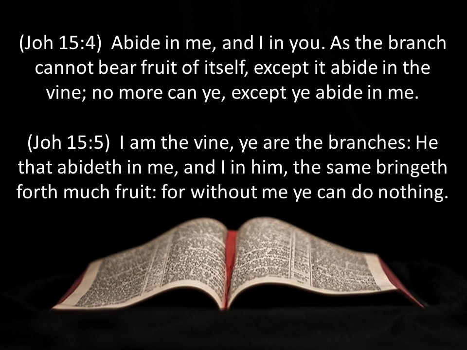 (Joh 15:4) Abide in me, and I in you.