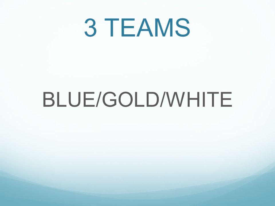 3 TEAMS BLUE/GOLD/WHITE