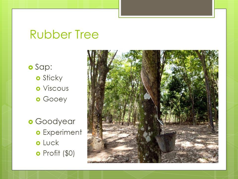 Rubber Tree  Sap:  Sticky  Viscous  Gooey  Goodyear  Experiment  Luck  Profit ($0)