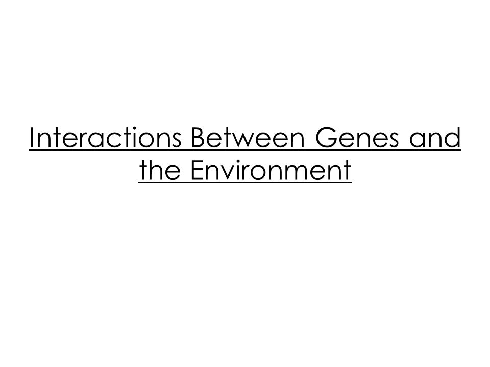 Interactions Between Genes and the Environment
