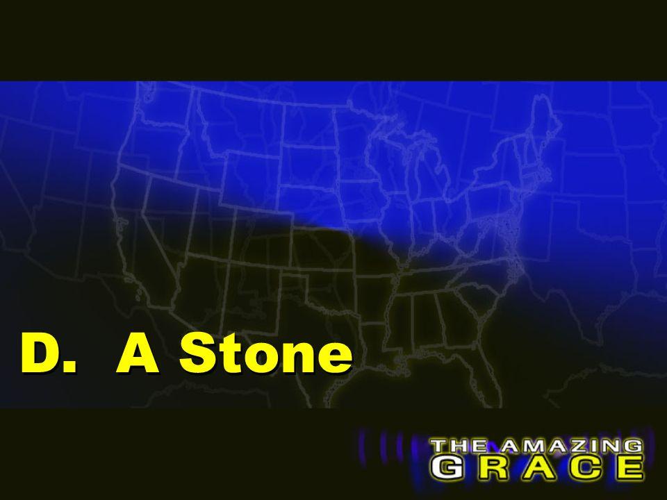 D. A Stone