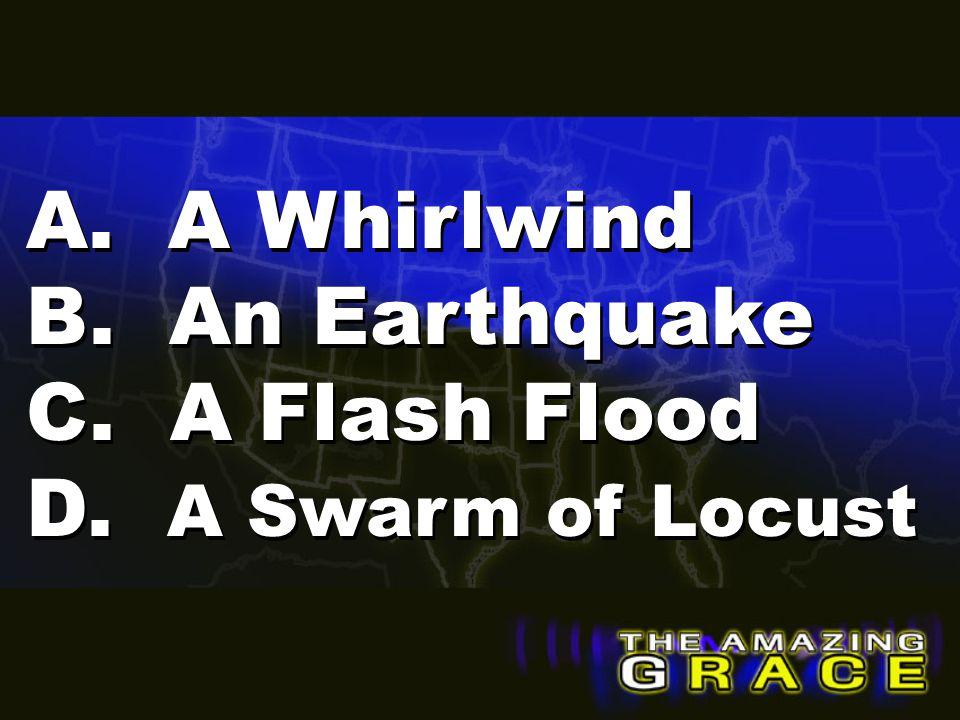 A. A Whirlwind B. An Earthquake C. A Flash Flood D. A Swarm of Locust