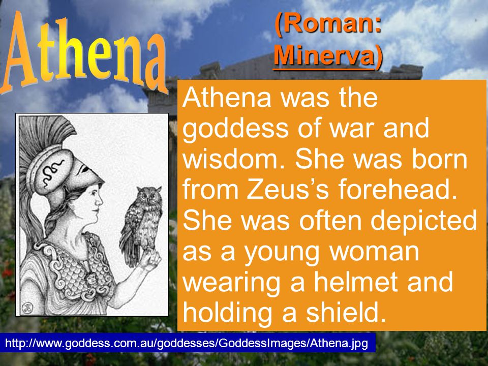 Athena was the goddess of war and wisdom. She was born from Zeus's forehead.