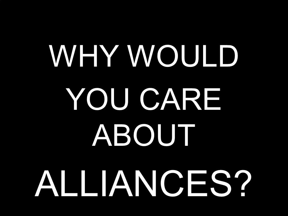 ENTERPRISE THINKING MetaMatrix Consulting Group WHY WOULD YOU CARE ABOUT ALLIANCES