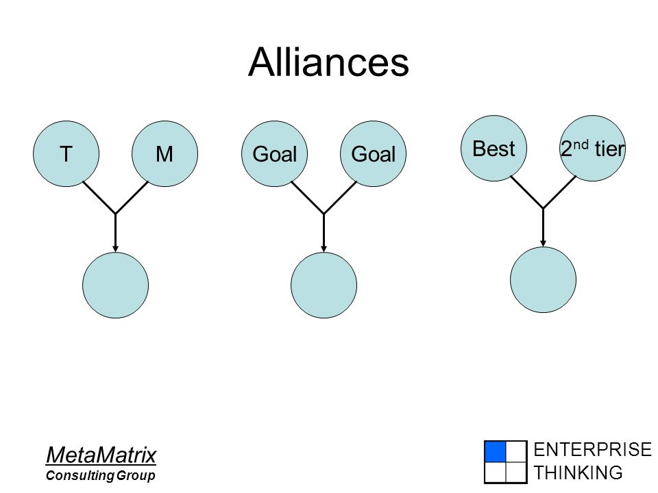 ENTERPRISE THINKING MetaMatrix Consulting Group Alliances Best2 nd tier TMGoal
