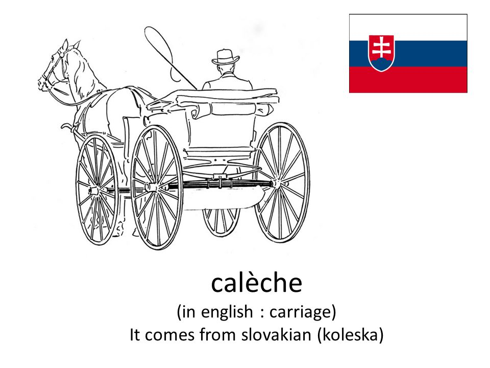 calèche (in english : carriage) It comes from slovakian (koleska)