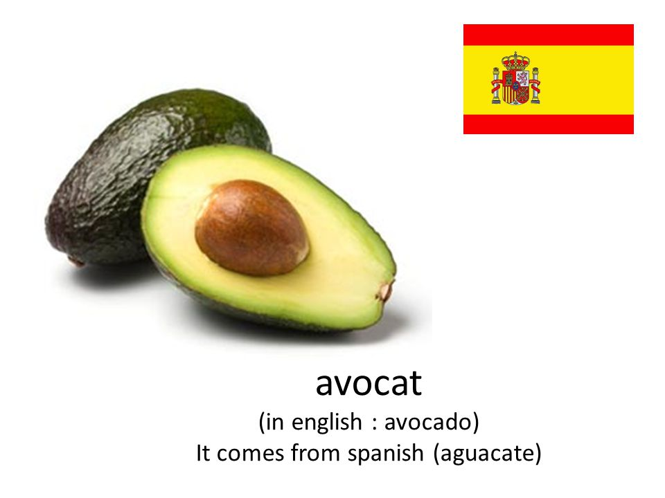 avocat (in english : avocado) It comes from spanish (aguacate)