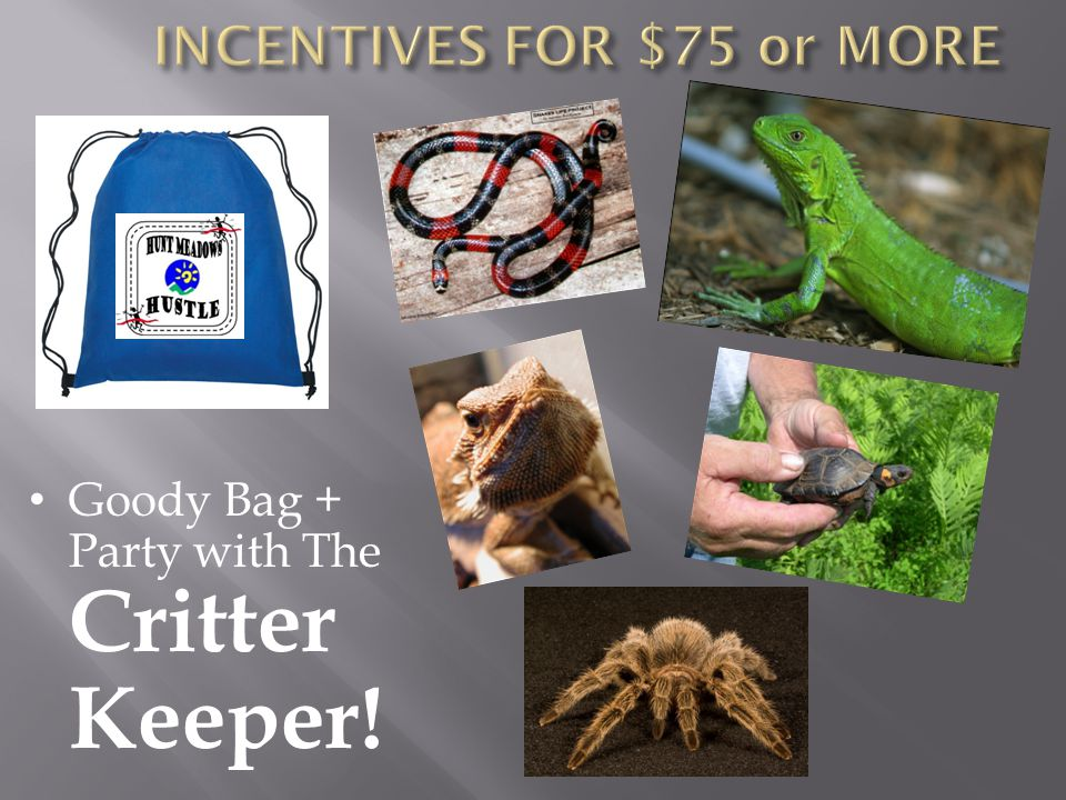 Goody Bag + Party with The Critter Keeper!