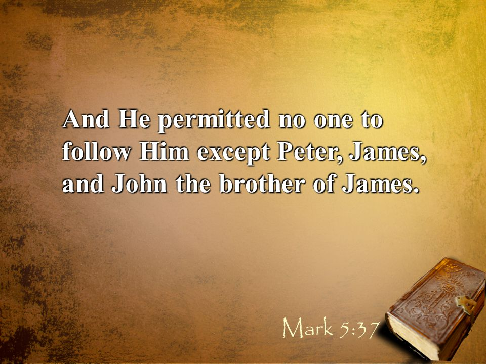 And He permitted no one to follow Him except Peter, James, and John the brother of James. Mark 5:37