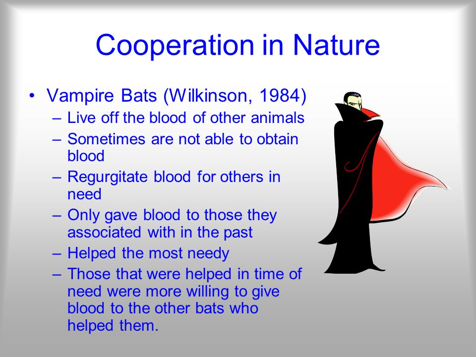 Cooperation in Nature Vampire Bats (Wilkinson, 1984) –Live off the blood of other animals –Sometimes are not able to obtain blood –Regurgitate blood for others in need –Only gave blood to those they associated with in the past –Helped the most needy –Those that were helped in time of need were more willing to give blood to the other bats who helped them.