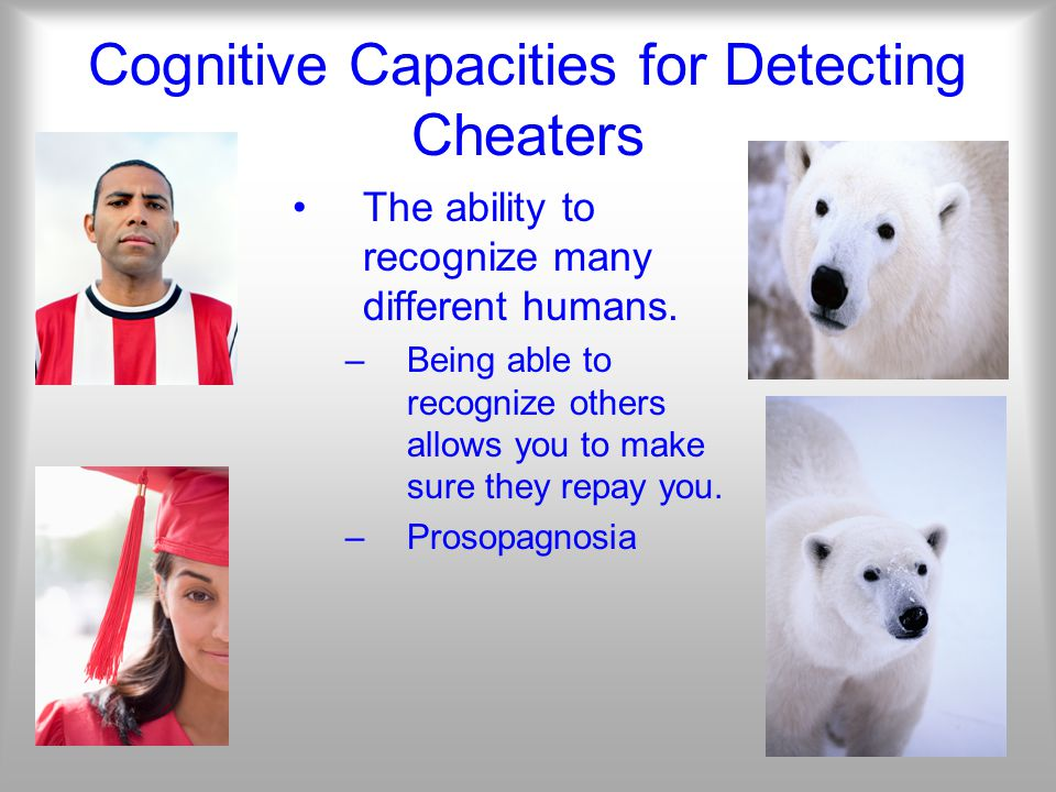 Cognitive Capacities for Detecting Cheaters The ability to recognize many different humans.