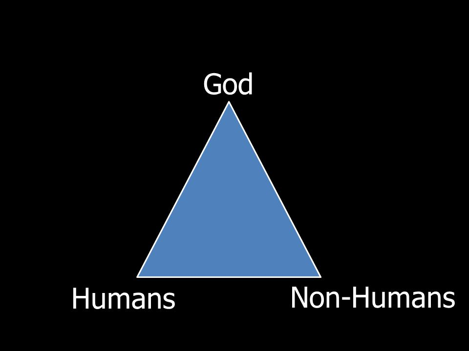 God Humans Non-Humans