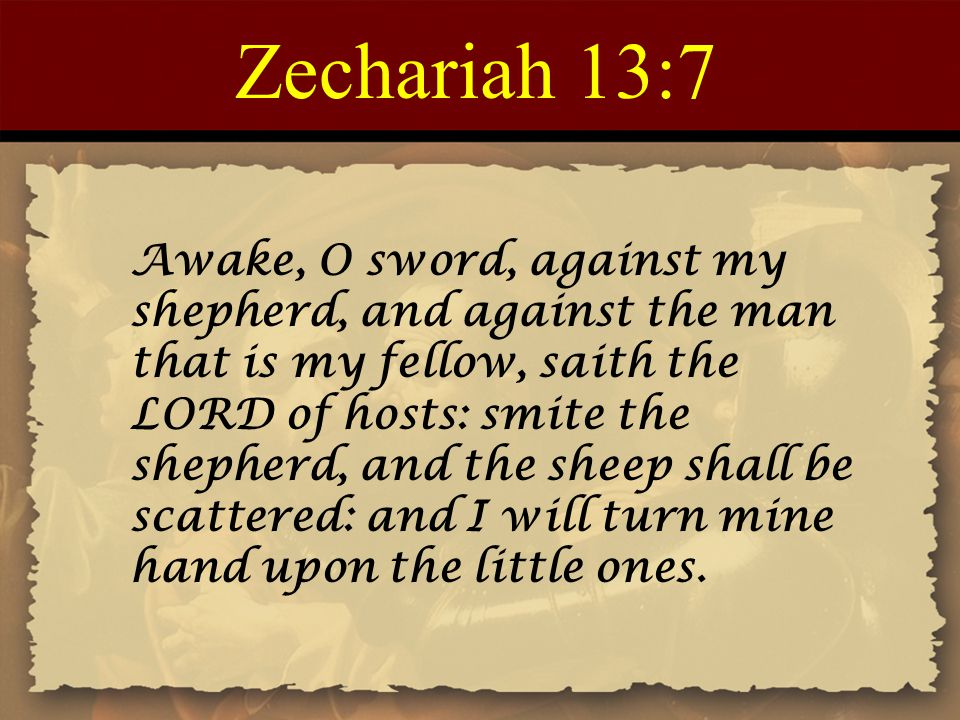 Zechariah 13:7 Awake, O sword, against my shepherd, and against the man that is my fellow, saith the LORD of hosts: smite the shepherd, and the sheep shall be scattered: and I will turn mine hand upon the little ones.