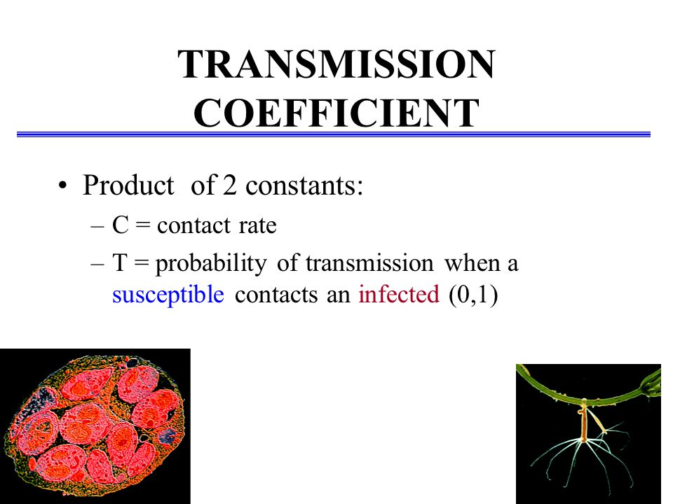 TRANSMISSION COEFFICIENT Product of 2 constants: –C = contact rate –T = probability of transmission when a susceptible contacts an infected (0,1)