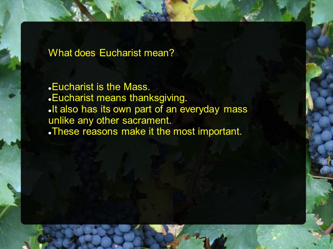 What does Eucharist mean. Eucharist is the Mass. Eucharist means thanksgiving.