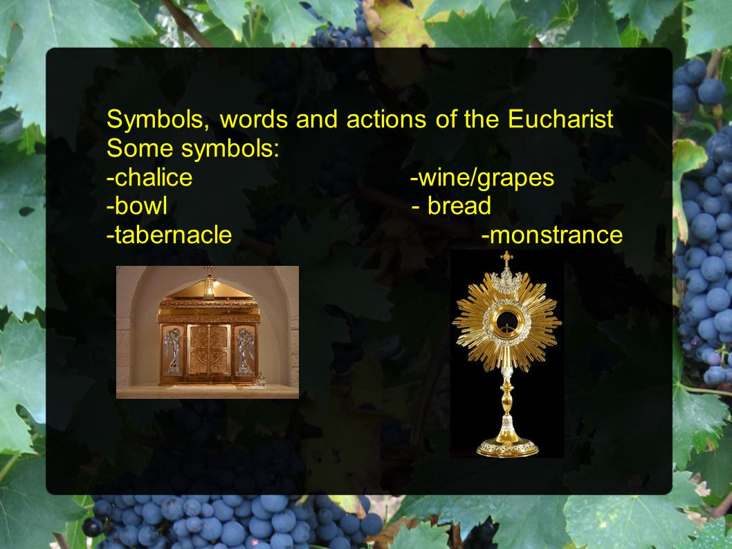 Symbols, words and actions of the Eucharist Some symbols: -chalice -wine/grapes -bowl - bread -tabernacle -monstrance