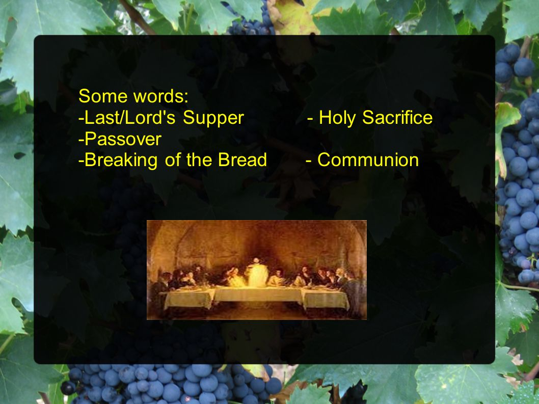 Some words: -Last/Lord s Supper - Holy Sacrifice -Passover -Breaking of the Bread - Communion