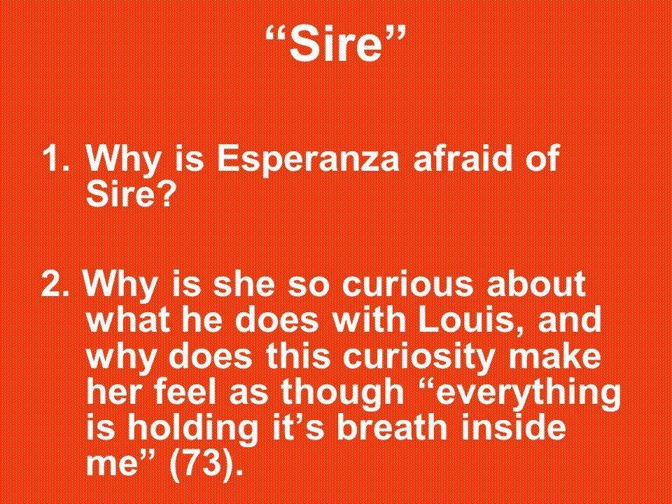 Sire 1.Why is Esperanza afraid of Sire.2.
