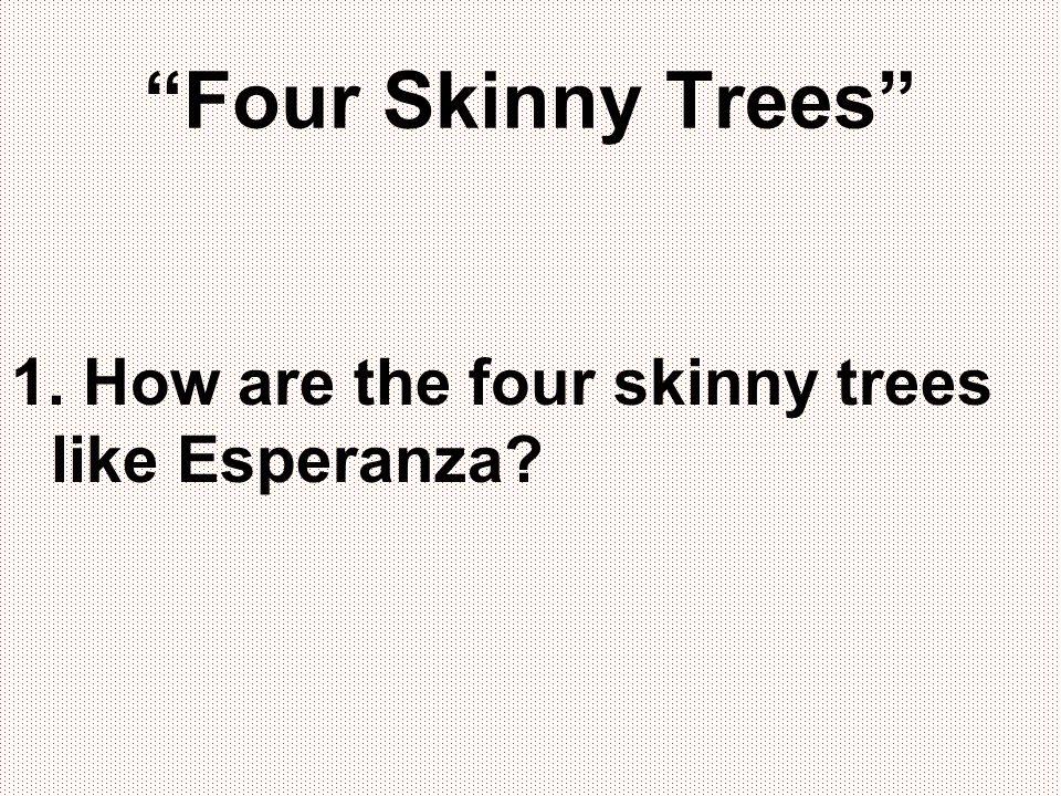 Four Skinny Trees 1. How are the four skinny trees like Esperanza?