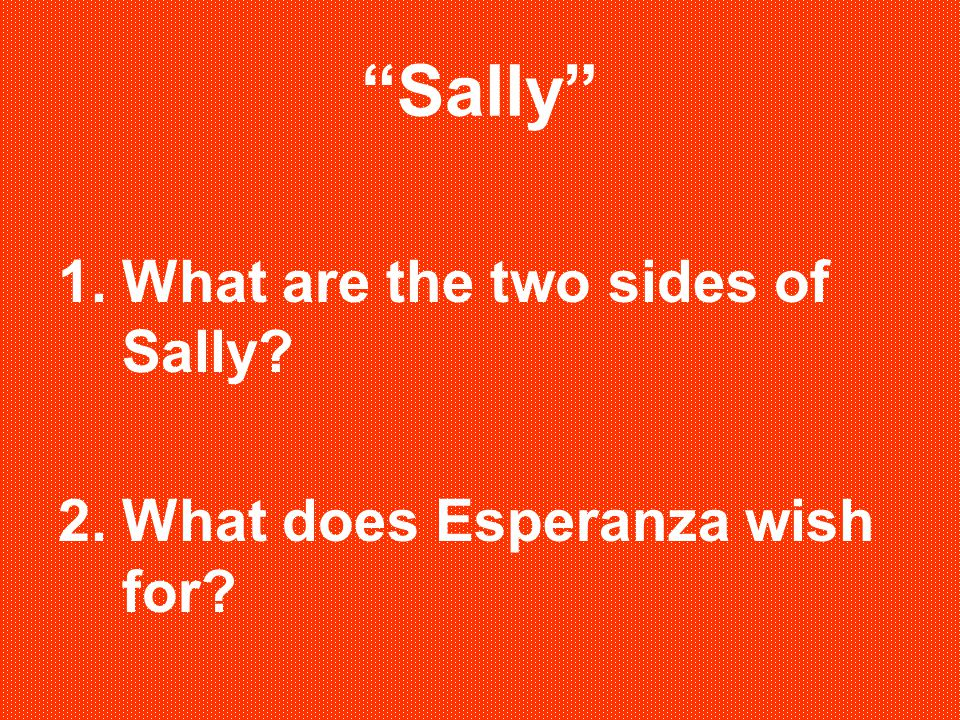 """""""Sally"""" 1.What are the two sides of Sally? 2.What does Esperanza wish for?"""