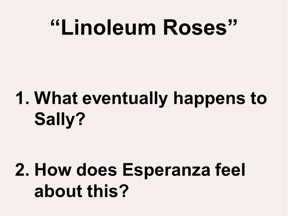 Linoleum Roses 1.What eventually happens to Sally? 2.How does Esperanza feel about this?