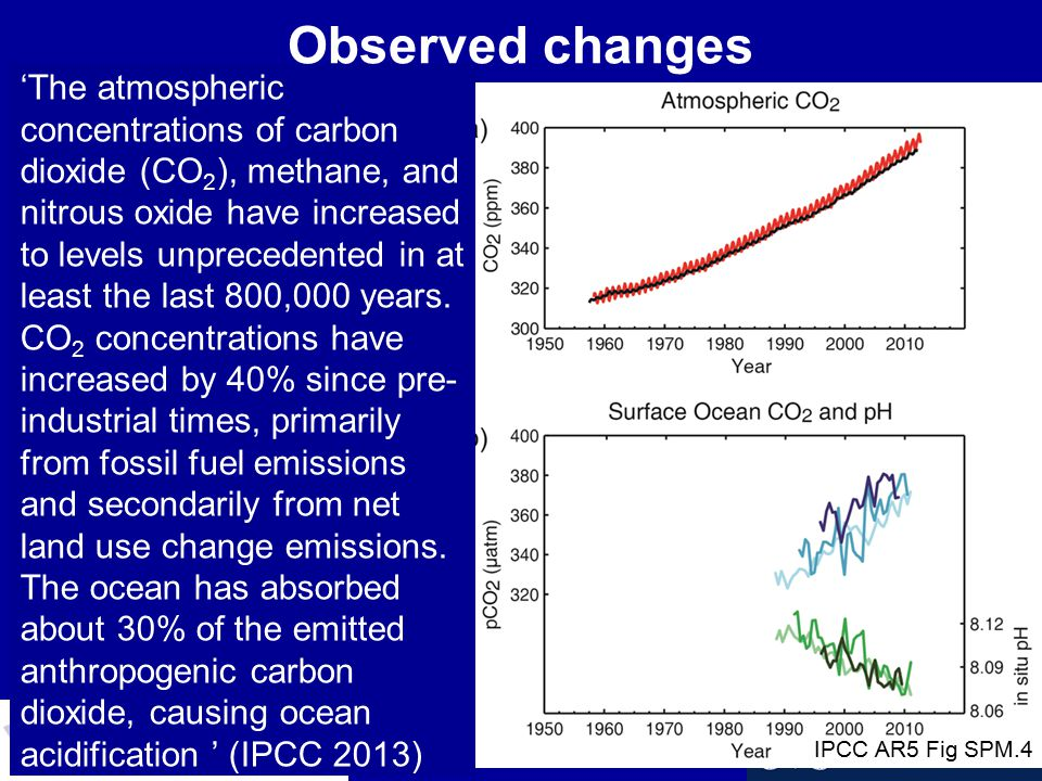 'The atmospheric concentrations of carbon dioxide (CO 2 ), methane, and nitrous oxide have increased to levels unprecedented in at least the last 800,000 years.