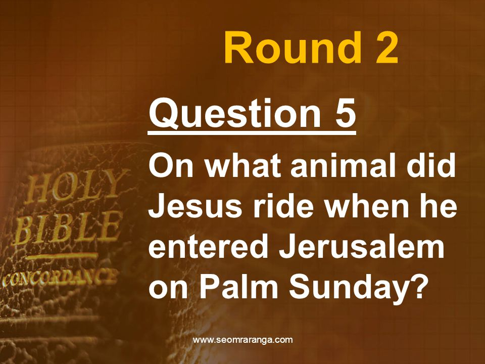 Round 2 Question 5 On what animal did Jesus ride when he entered Jerusalem on Palm Sunday.