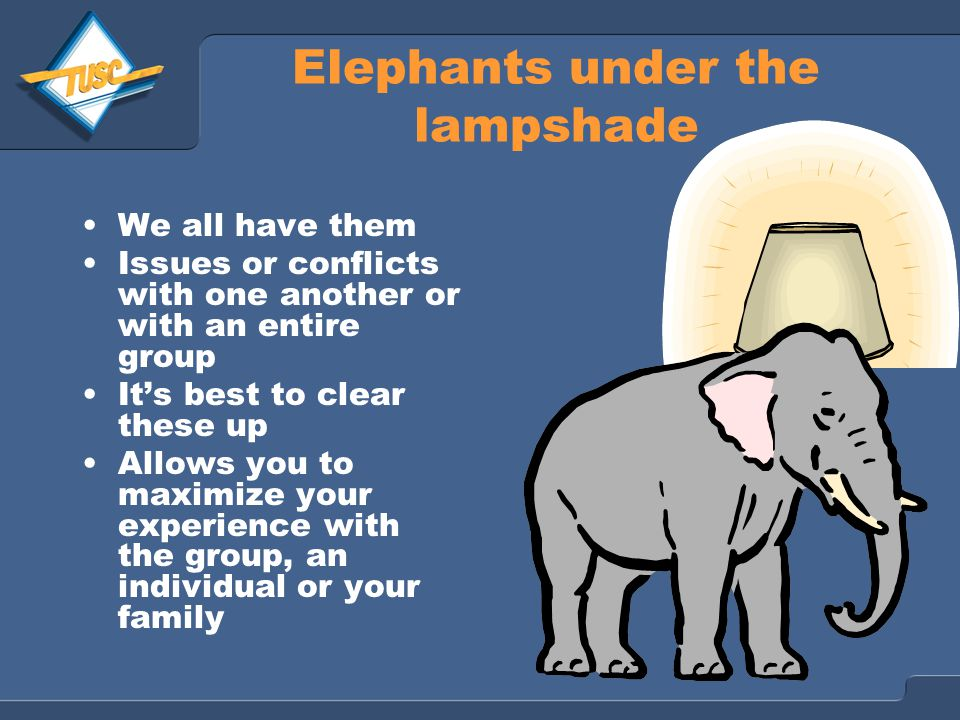 Elephants under the lampshade We all have them Issues or conflicts with one another or with an entire group It's best to clear these up Allows you to maximize your experience with the group, an individual or your family