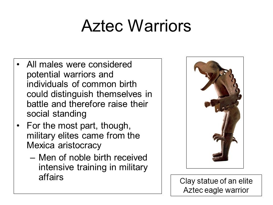 Aztec Warriors All males were considered potential warriors and individuals of common birth could distinguish themselves in battle and therefore raise their social standing For the most part, though, military elites came from the Mexica aristocracy –Men of noble birth received intensive training in military affairs Clay statue of an elite Aztec eagle warrior