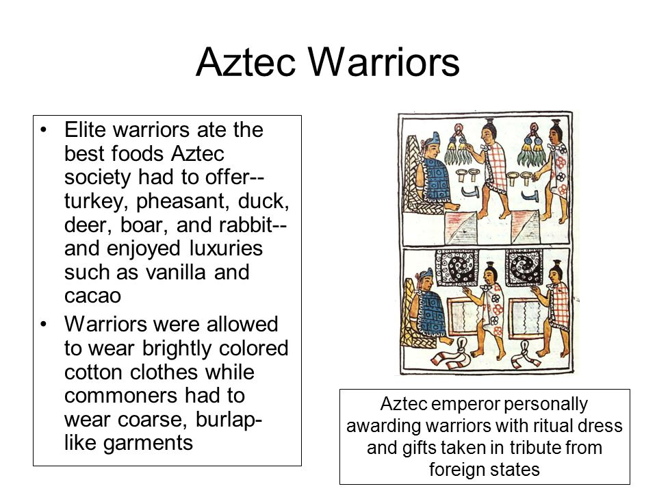 Aztec Warriors Elite warriors ate the best foods Aztec society had to offer-- turkey, pheasant, duck, deer, boar, and rabbit-- and enjoyed luxuries such as vanilla and cacao Warriors were allowed to wear brightly colored cotton clothes while commoners had to wear coarse, burlap- like garments Aztec emperor personally awarding warriors with ritual dress and gifts taken in tribute from foreign states
