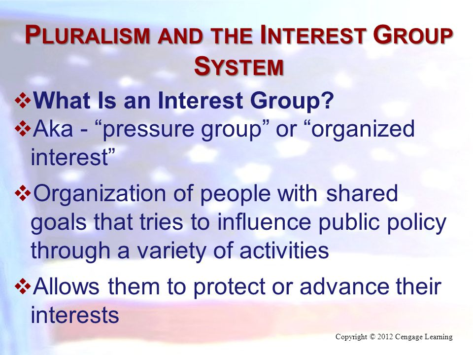P LURALISM AND THE I NTEREST G ROUP S YSTEM  What Is an Interest Group.