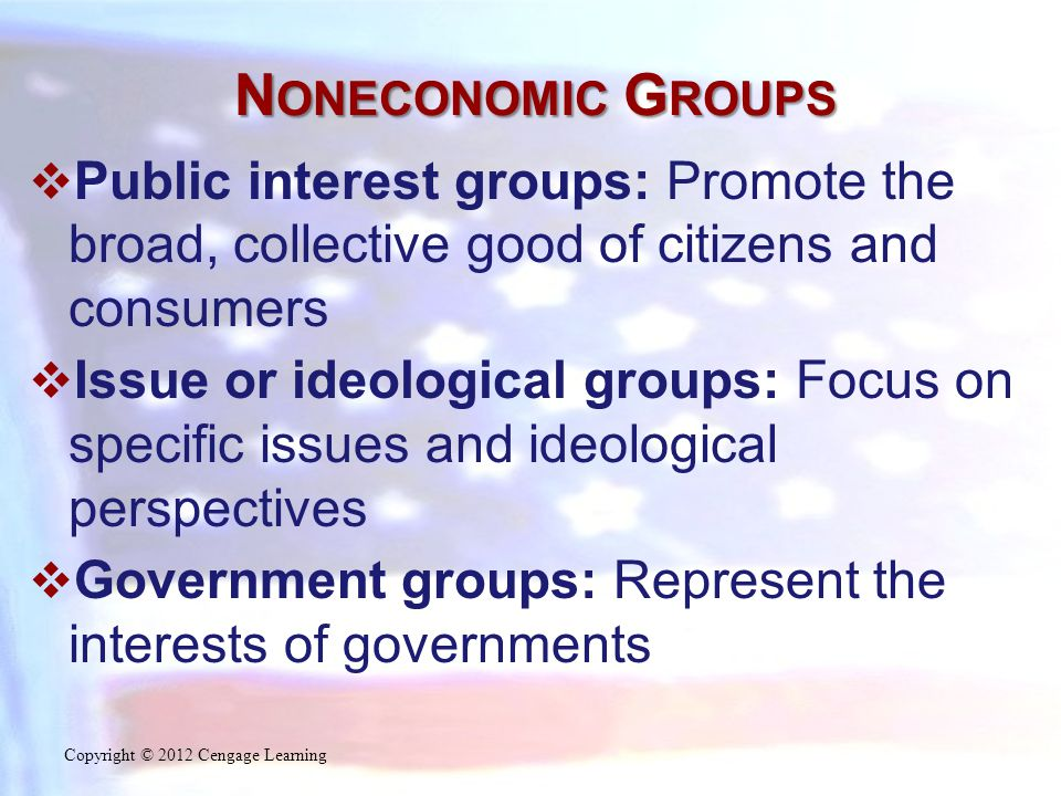 N ONECONOMIC G ROUPS  Public interest groups: Promote the broad, collective good of citizens and consumers  Issue or ideological groups: Focus on sp