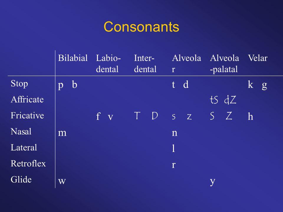 Consonants BilabialLabio- dental Inter- dental Alveola r Alveola -palatal Velar Stop p bt dk g Affricate tS dZ Fricative f v T Ds zS Z h Nasal mn Lateral l Retroflex r Glide wy