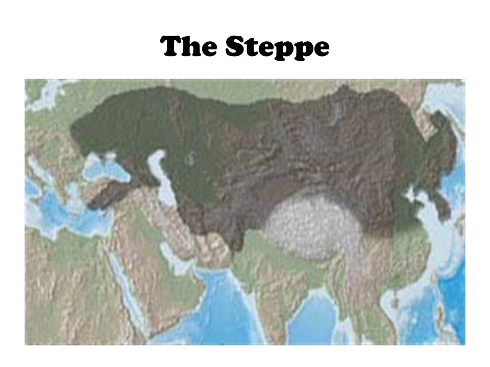 The Steppe