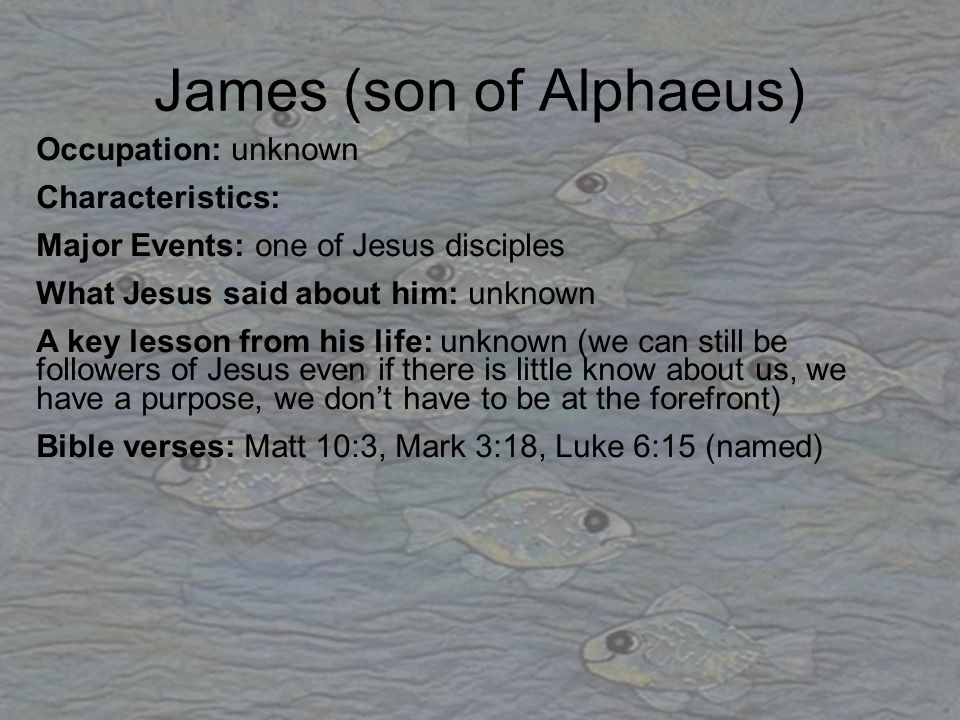 James (son of Alphaeus) Occupation: unknown Characteristics: Major Events: one of Jesus disciples What Jesus said about him: unknown A key lesson from