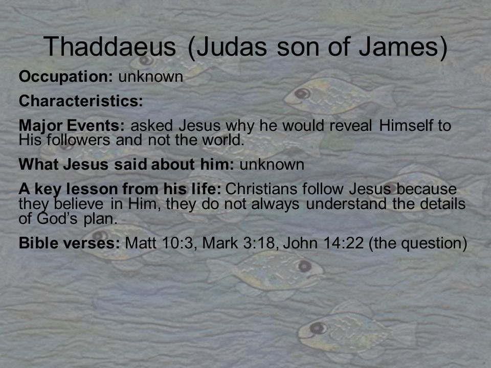 Thaddaeus (Judas son of James) Occupation: unknown Characteristics: Major Events: asked Jesus why he would reveal Himself to His followers and not the