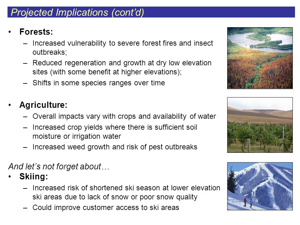 Forests: –Increased vulnerability to severe forest fires and insect outbreaks; –Reduced regeneration and growth at dry low elevation sites (with some benefit at higher elevations); –Shifts in some species ranges over time Agriculture: –Overall impacts vary with crops and availability of water –Increased crop yields where there is sufficient soil moisture or irrigation water –Increased weed growth and risk of pest outbreaks And let's not forget about… Skiing: –Increased risk of shortened ski season at lower elevation ski areas due to lack of snow or poor snow quality –Could improve customer access to ski areas Projected Implications (cont'd)