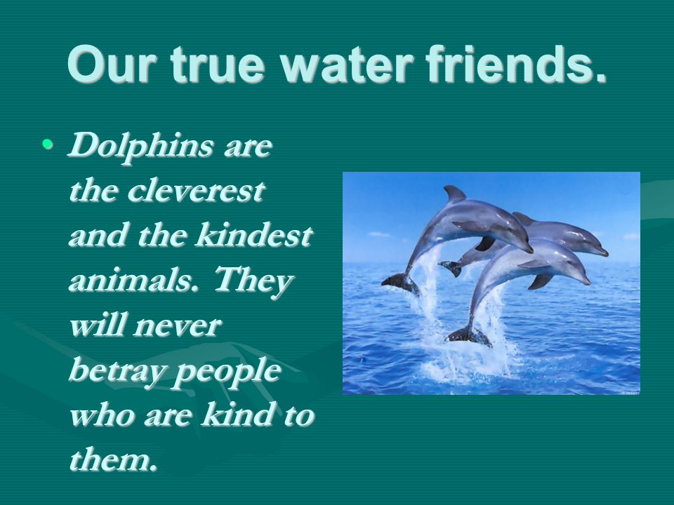 Our true water friends. Dolphins are the cleverest and the kindest animals.