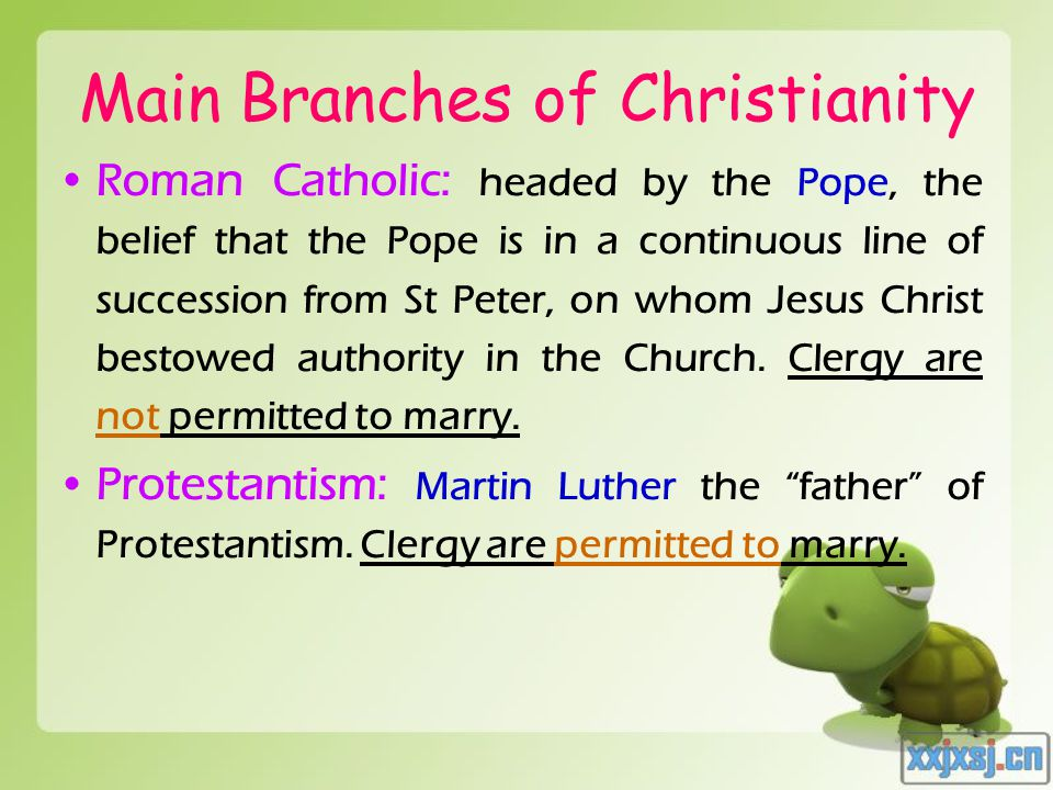 Main Branches of Christianity Roman Catholic: headed by the Pope, the belief that the Pope is in a continuous line of succession from St Peter, on who