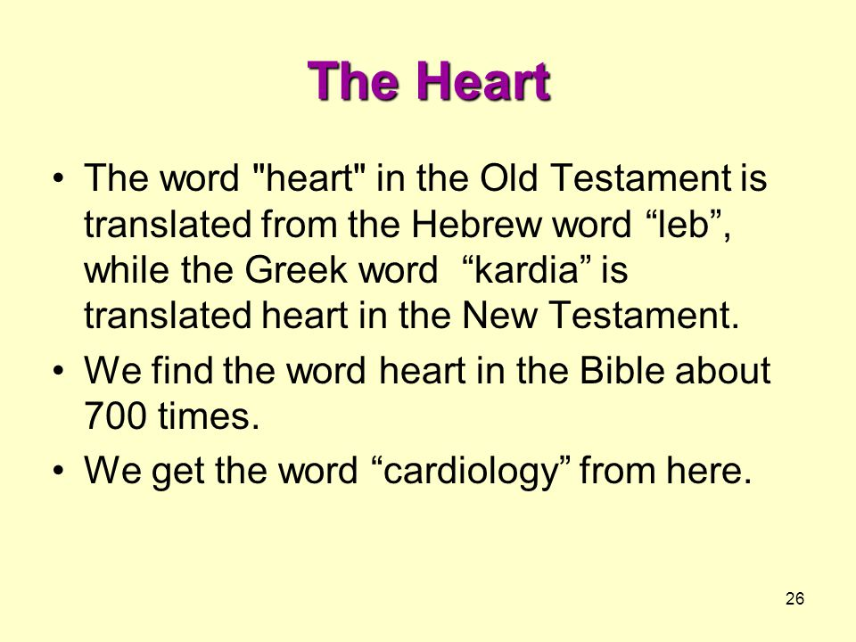 26 The Heart The word heart in the Old Testament is translated from the Hebrew word leb , while the Greek word kardia is translated heart in the New Testament.