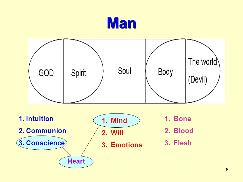 6 Man 1. Intuition 2. Communion 3. Conscience 1.Mind 2.Will 3.Emotions 1.Bone 2.Blood 3.Flesh Heart