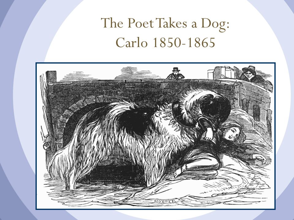 The Poet Takes a Dog: Carlo 1850-1865