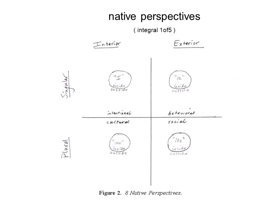 native perspectives ( integral 1of5 )