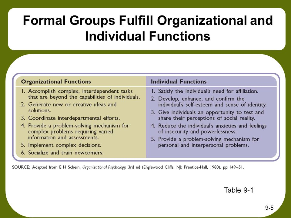 Formal Groups Fulfill Organizational and Individual Functions 9-5 Table 9-1