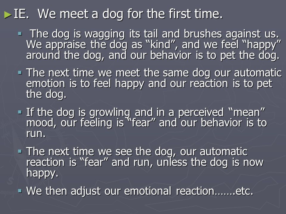► IE. We meet a dog for the first time.  The dog is wagging its tail and brushes against us.