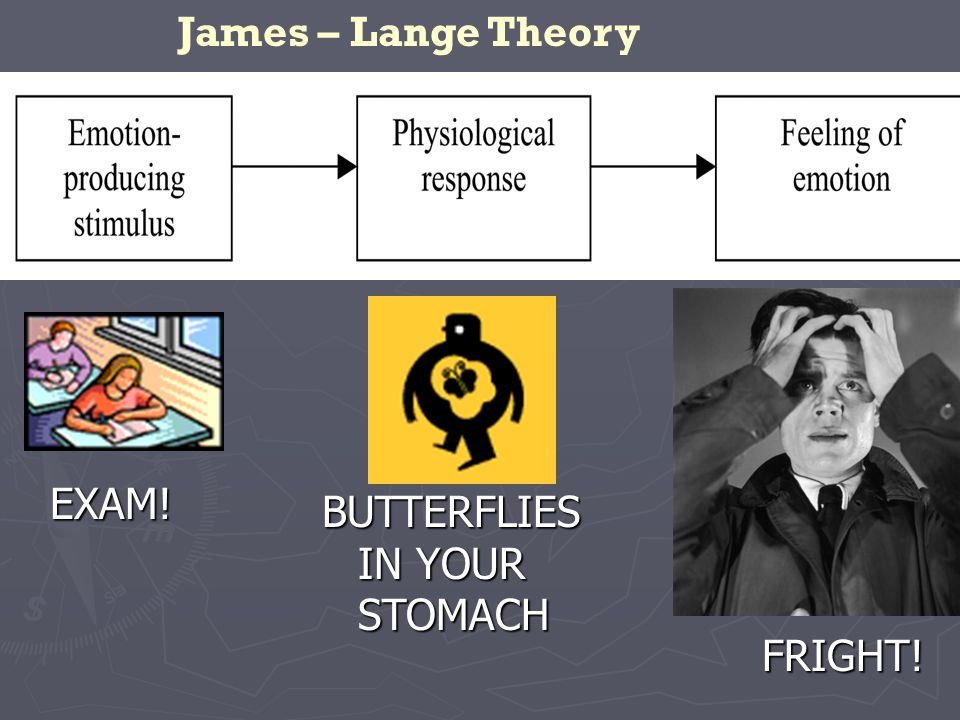 EXAM! BUTTERFLIES IN YOUR STOMACH FRIGHT! James – Lange Theory