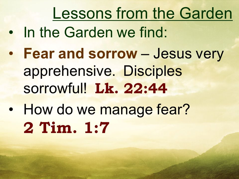In the Garden we find: Fear and sorrow – Jesus very apprehensive.