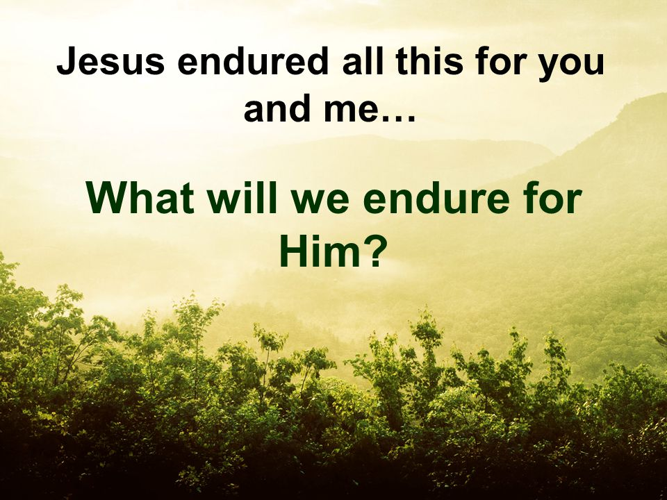 Jesus endured all this for you and me… What will we endure for Him