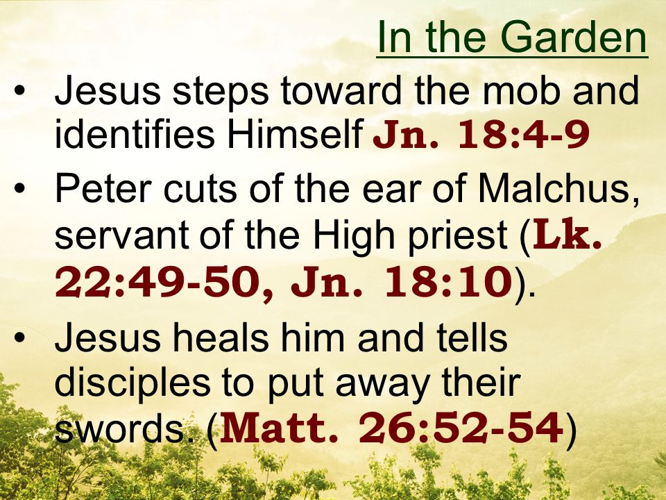 Jesus steps toward the mob and identifies Himself Jn.